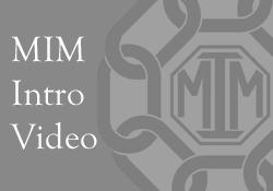 MIM-Video